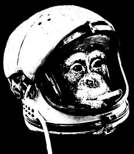 RatBaG profile image